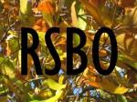 RSBO logo
