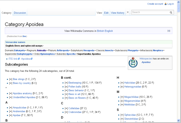 Wikimedia Commons search results for 'bee'