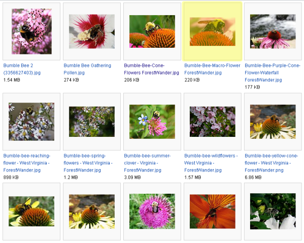 Wikimedia Commons thumbnails